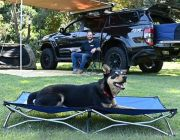 Kings Folding Pet Bed